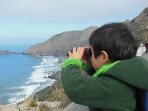 1402 action binoculars