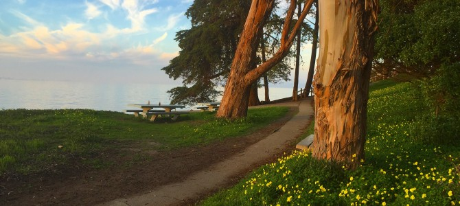 We Love the Parks: San Mateo County Parks Foundation